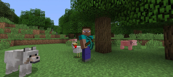 minecraftps4screenshot5