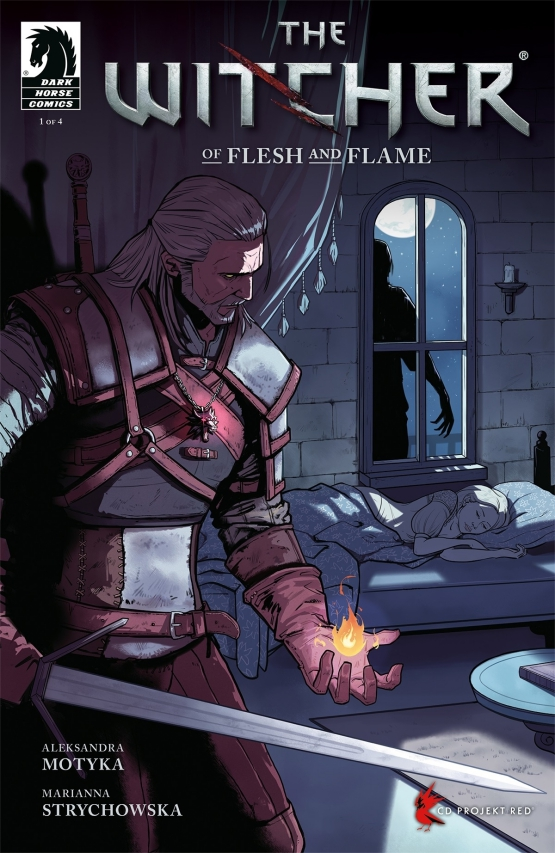 Witcher Comic Series