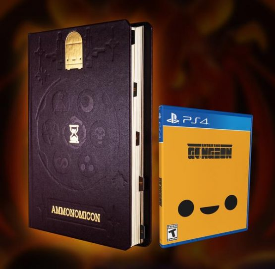 Enter the Gungeon physical