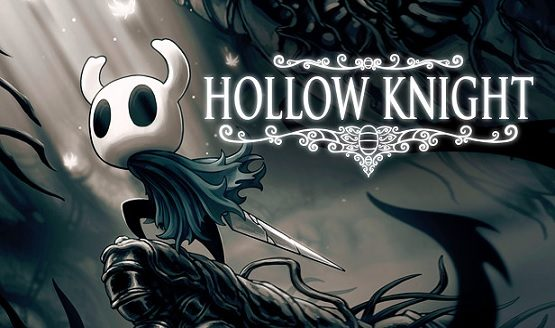 hollow knight physical
