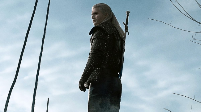 the witcher series roach