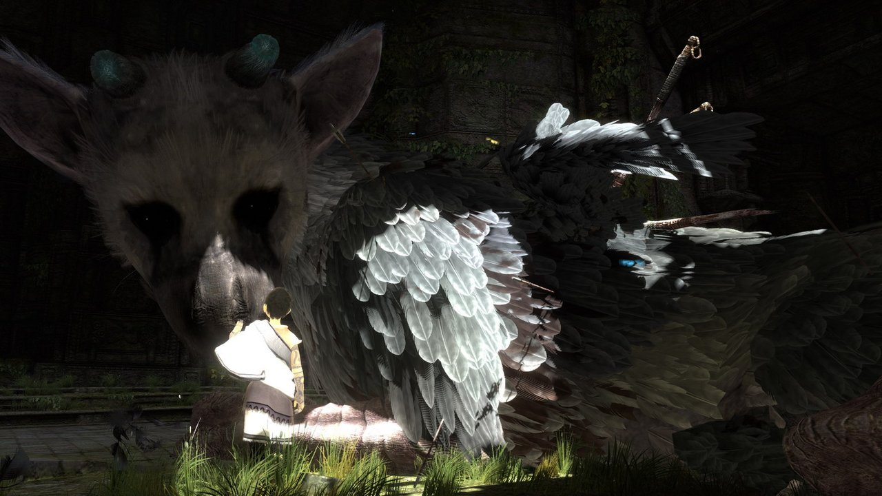 No Further The Last Guardian Announcements